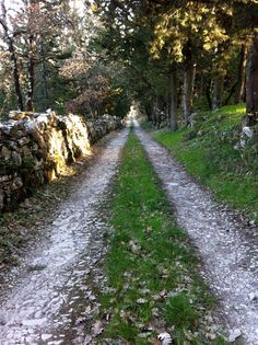 ❥ love this road....