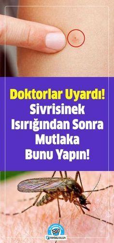 Doktorlar Uyardı Sivrisinek Isırığından Sonra Mutlaka Bunu Yapın! #sağlık #doktor #uyarı #sivrisinek #tedavi #buz #sirke #dişmacunu #fesleğen #soğan #tuz #bal #çay #alerji