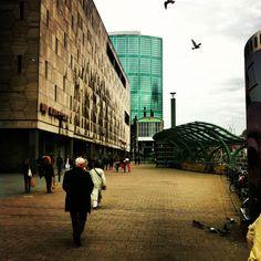 Bijenkorf in Rotterdam