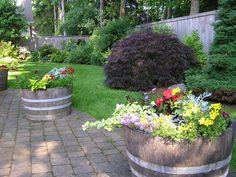 shade gardening | Backyard Pics – Shade Garden | devonplacehome