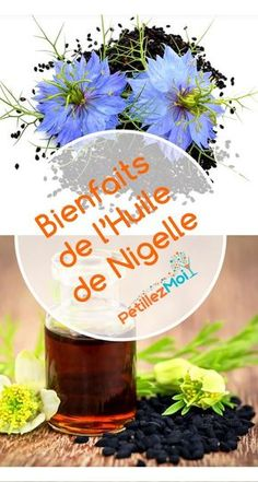 Bienfaits de l'huile de nigelle Acupuncture, Homemade Beauty, Beauty Makeup, Hair Care, Medical, Perfume, Cosmetics, Mets, Cumin Noir