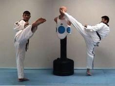Taekwondo Round House Kick Tutorial (taekwonwoo) 태권도 돌려차기 (+playlist)