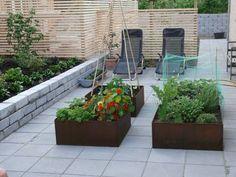 Plantekasser i cortenstål, rusten stål, med planter og blomster