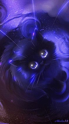 Schwarzer_Kater_Nacht - Best of Wallpapers for Andriod and ios Cat Wallpaper, Animal Wallpaper, Cute Animal Drawings, Anime Animals, Warrior Cats, Cat Drawing, Sketch Drawing, Beautiful Cats, Cute Baby Animals