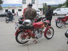 mi ex moto...Ducati 175ts
