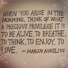 Think of what a precious privilege it is to be alive, to breathe, to think, to enjoy, to love.