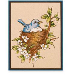 Stampendous® Nestled Bird Card