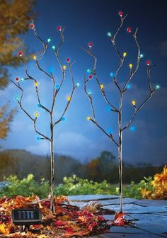 "Solar Lighted Pussy Willow Garden Stakes By Collections Etc by Collections. $14.99. Light up the night with a colorful light show. Each branch tipped with solar-powered LED lights. Set of 2 pussy willow stakes. Includes 2 ""AA"" solar-recharging batteries. Each measures 35""H. Light up the night with a colorful light show. Set of 2 pussy willow stakes has each branch tipped with solar-powered, LED lights. Includes 2 AA solar-recharging batteries. Each measures 35""H."