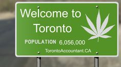 What financial implications is the legalization of pot going to have on Canada if it ends up with the LCBO? Dares, Destiny, Accounting, Toronto, Canada, News, Business Accounting, Beekeeping