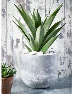 Concrete - Decorative Home - Indoor Living