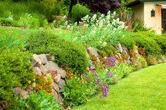 BBY 2014 - Cathy's garden