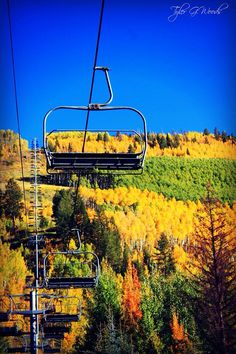 Fall in #Vail #Colorado - the Aspen Trees in their prime