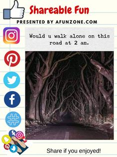 #Solve #Share and #Pin #Facebook #Twitter #Instagram #Pinterest #Like - #Halloween #Scary #Road #Spooky
