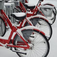 The snows has been pretty (for a little), but we're ready to bike! Stay away snow, stay away! #cincyredbike (photo: @cillyseal)