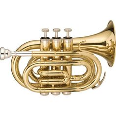 Stagg Series Bb Pocket Trumpet Clear Lacquer - Cornet - Ideas of Cornet Pocket Trumpet, Brass Instrument, Trumpet Instrument, Trumpet Players, Gold Models, Backpack Straps, How To Introduce Yourself, Cool Things To Buy, Brass Band