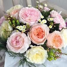 david austin roses - Google Search