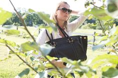 Oughton Bags and Horse Accessories - 213k