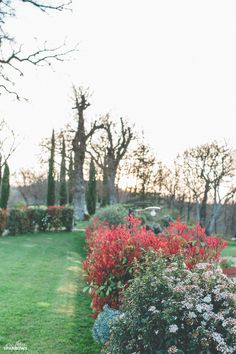 04.22 Tuscan Villa La Vecchia Quercia Tuscany Poppi Toronto Photographer Italy Destination Wedding Poppi Italy Wedding Wee Three Sparrows Photography_35