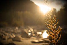 Sun is shining.. | von Patrick Wibmer