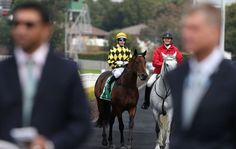 You won't guess where Spill The Beans is headed after the Brisbane winter carnival.