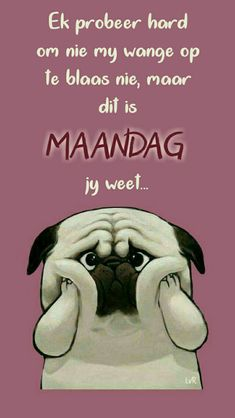 Best Quotes, Funny Quotes, Car Care Tips, Afrikaanse Quotes, Goeie Nag, Goeie More, Monday Quotes, Nice Sayings, Mondays