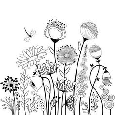 Abstract flowers and butterfly in black and white Abstrakte Blüten und Schmetterling in Schwarz-Weiß – Vektorgrafik<br> Abstract flowers and butterfly in black and white Posca Art, Black And White Abstract, Black White, Black And White Doodle, Clipart Black And White, White Art, Flower Doodles, Doodle Flowers, Flower Art