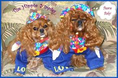 The Hippie Yippies