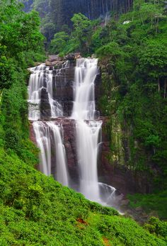 How to Make An Apple Pie and See the World: Ramboda Falls, Sri Lanka. It's a high beautiful waterfall and the highest waterfall in Sri Lanka Voyage Sri Lanka, Places To Travel, Places To See, Travel Destinations, Beautiful World, Beautiful Places, Travel Around The World, Around The Worlds, Sri Lanka Photography