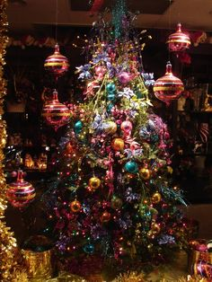 CoActive Dreams Gallery: The Magic of Christmas Lghts