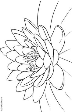 Lotus Flower Coloring Pages Title