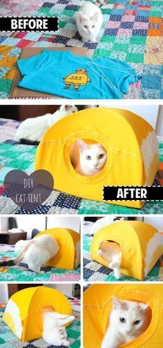 Want to know how to make a DIY cat tent? If you want to give your furball a place he or she can call their own, then this DIY pet project is for you. Diy Cat Toys, Cats Diy, Diy Animal Toys, Diys For Cats, Pet Toys, Gatos Cat, Cat House Diy, House For Cats, Cat Tent