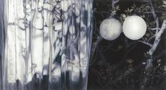 Untitled, 2008 oil on canvas 130 x 240 cm
