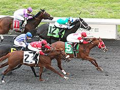 Oscar Nominated isn't nominated to the Triple Crown, but he's headed to the Kentucky Derby (gr. I) after his upset win in the $500,000 Horseshoe Cincinnati Casino Spiral Stakes (gr. III) April 2, 2016 at Turfway Park.