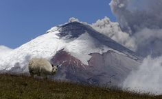 The Cotopaxi volcano spews ash and vapor, as seen from El Pedregal, Ecuador, on September 3, 2015. Cotopaxi began showing renewed activity in April—its last major eruption was in 1877.