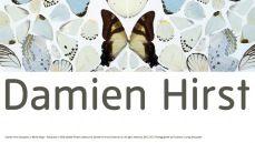 Damien Hirst: Art and Life | Tate