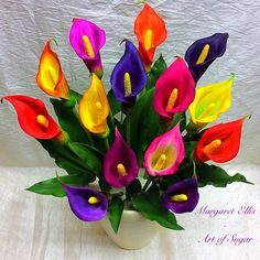 Colourful Calla's by Margaret Ellis - Art of Sugar