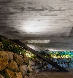 Rooftop infinity pool overlooks the Brazilian rainforest from Studio Jungle House Contemporary Architecture, Architecture Details, Minimalist Architecture, Future House, My House, Brazilian Rainforest, Studio Mk27, Jungle House, Exposed Concrete