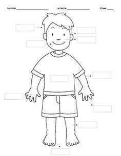 body parts spanish clipart labelling label blank english worksheet para preschool assessment empezar class kindergarten vocabulary taking students human worksheets