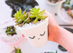 Há alguns meses decidi começar a cuidar de algumas plantinhas. Sempre fui apaixonada por natureza e acho que ter flores e plantas em casa acalma e tranquiliza o ambiente. Depois de pesquisar um pouco sobre plantas indoor, resolvi comprar algumas suculentas e cactus para dar o ar da graça na minha sala e quarto. Escolhi …