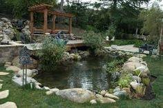 English on pinterest for Koi pool water gardens thornton