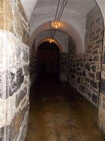 Inner workings?: Biltmore House- Sub-basement- Storage Room/ Passage way