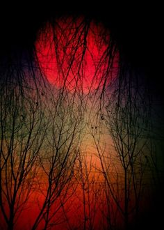 Red Moon. S)