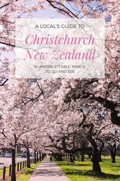 Top things to do in Christchurch New Zealand - Travel Trends Stuff To Do, Things To Do, Christchurch New Zealand, New Zealand Travel Guide, Visit New Zealand, New Zealand South Island, New Brighton, Wildlife Park, Australia Travel