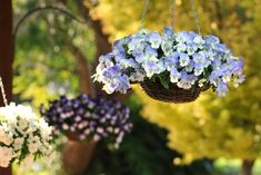 Choose baskets in single colors to complement your home's exterior. Or get in on nature's autumn act by hanging baskets overflowing with pansies that contrast with the fall color of nearby trees. Fall Hanging Baskets, Diy Hanging, Fall Planters, Hanging Planters, Hanging Gardens, Indoor Planters, Plants Indoor, Garden Mum, Fall Flowers