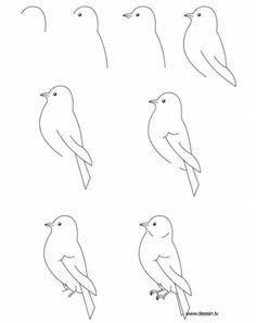 27 Beste Afbeeldingen Van Een Vogel Tekenen Een Vogel Tekenen