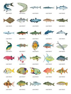 free-vector-clipart-fish-2