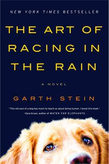 The Art of Racing in the Rain...one of my favorites!