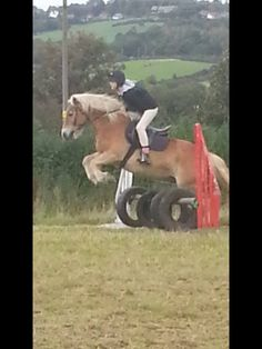 Dorus and me jumping cross country