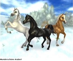 want these horses, black and golden :P