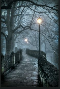 z- Foggy City- Lantern Walkway, Chester, England The Places Youll Go, Places To Visit, Beautiful World, Beautiful Places, Pathways, Belle Photo, Beautiful Landscapes, England Uk, Oxford England